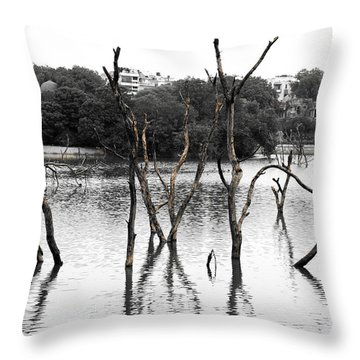 Stomps Of Trees In A Lake Throw Pillow
