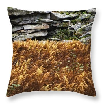 Stone Wall And Fern Throw Pillow