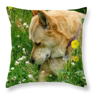 Stop And Smell The Clover Throw Pillow