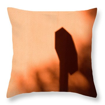 Solar Signs 2009 Limited Edition 1 Of 1 Throw Pillow