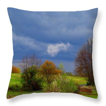 Throw Pillow featuring the photograph Storm Cell by Kathryn Meyer