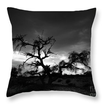 Storm Clouds. Throw Pillow
