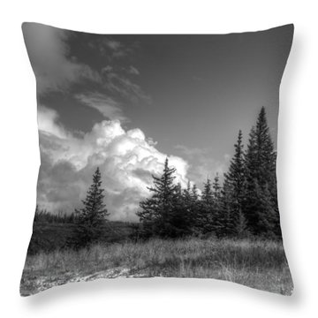Storm Clouds Building Throw Pillow by Michele Cornelius