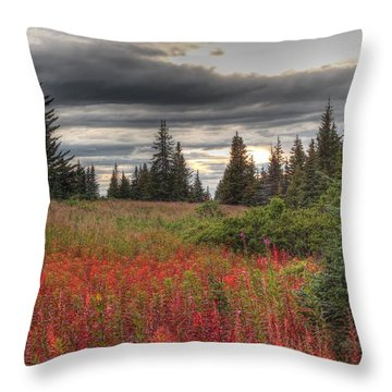 Storm Clouds In Fall Throw Pillow by Michele Cornelius