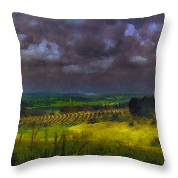 Storm Clouds Over Meadow Throw Pillow