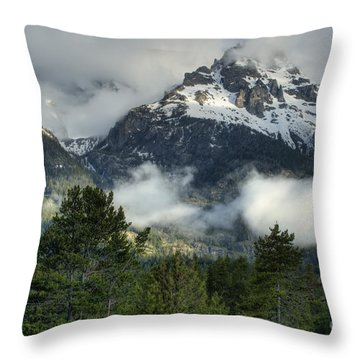 Storm  In The Tetons Throw Pillow by Sandra Bronstein
