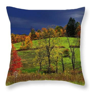 Stormy Autumn Morning Throw Pillow by Thomas R Fletcher