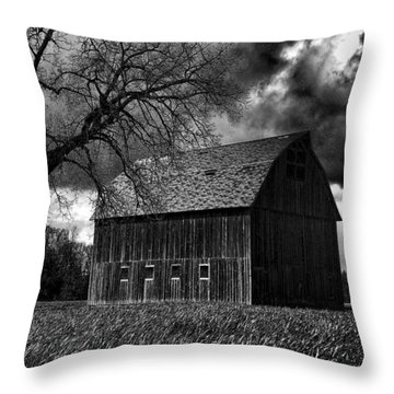 Stormy Throw Pillow by Bonnie Bruno