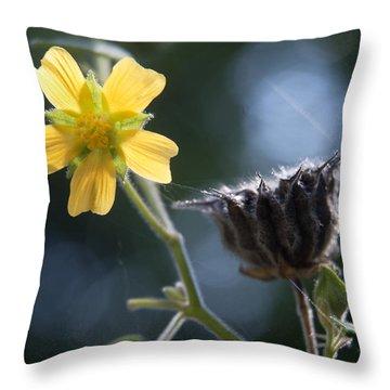 Strange Bedfellows Throw Pillow