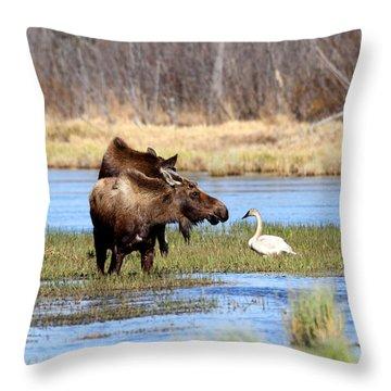 Strange Pond Fellows Throw Pillow