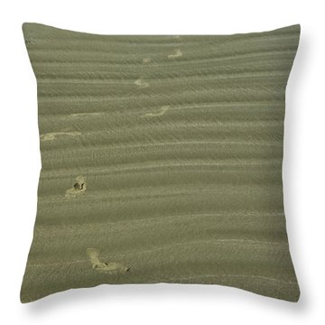 Straying From The Path Throw Pillow by Travis Crockart
