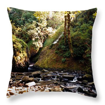 Throw Pillow featuring the photograph Stream Bed Oregon by Maureen E Ritter