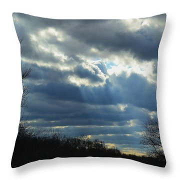 Throw Pillow featuring the photograph Streaming by Mary Zeman