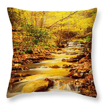 Streams Of Gold Throw Pillow by Darren Fisher