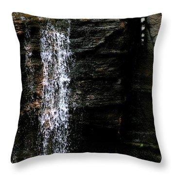 Strength At Rest Throw Pillow