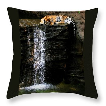 Strength At Rest Throw Pillow by Angela Rath