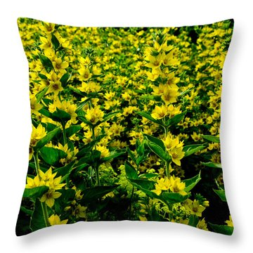 Strength In Numbers Throw Pillow by Travis Crockart