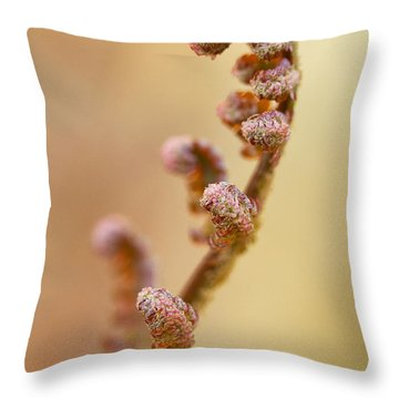 Stretch Throw Pillow by Carrie Cranwill