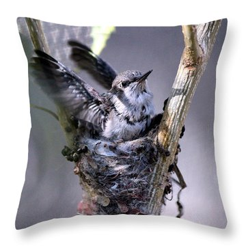 Throw Pillow featuring the photograph Stretching My Wings by Jo Sheehan