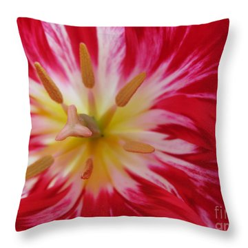 Striped Flaming Tulips. Hot Pink Rio Carnival Throw Pillow