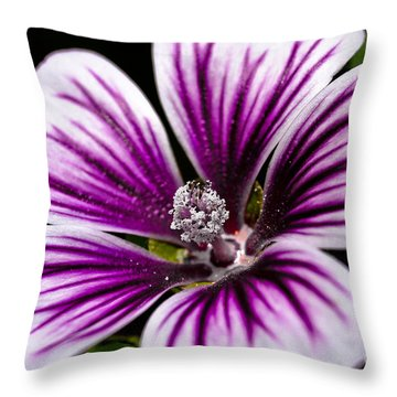 Stripped Blossom Throw Pillow by Larry Carr