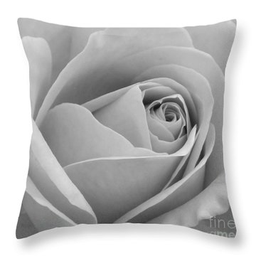 Study In Black And White Throw Pillow by Cindy Manero
