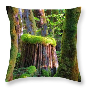 Stump And Moss  Throw Pillow