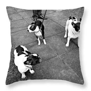 Stylish Throw Pillow