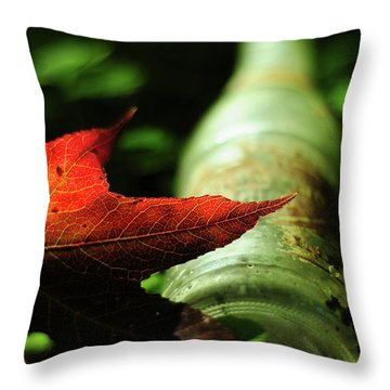 Suburban Club After Hours Throw Pillow by Rebecca Sherman