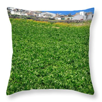 Sugarbeet Field Throw Pillow by Gaspar Avila