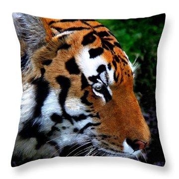 Throw Pillow featuring the photograph Sumatran Strength by Davandra Cribbie