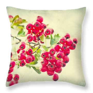 Summer Berries Throw Pillow by Angela Doelling AD DESIGN Photo and PhotoArt