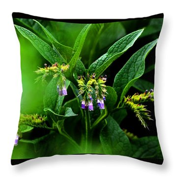Throw Pillow featuring the photograph Summer Comfrey Blooms by Susanne Still
