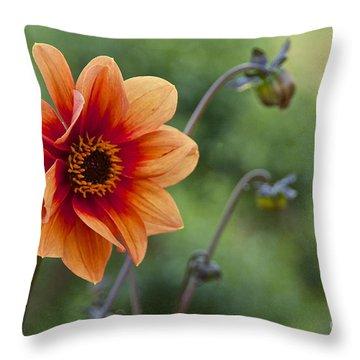 Summer Dahlia Throw Pillow