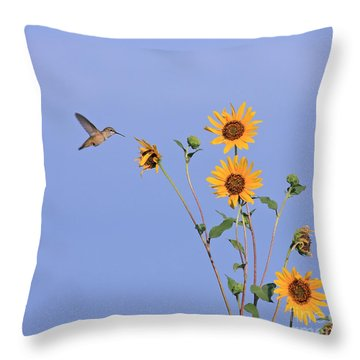 Summer Day Hummingbird Throw Pillow
