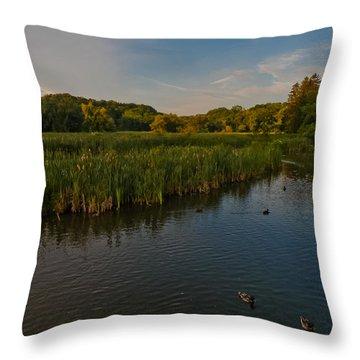 Summer Duck Pond Throw Pillow by Jiayin Ma