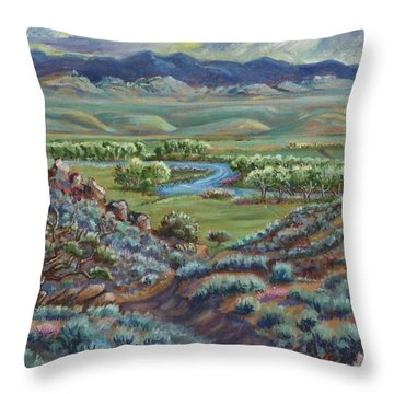 Summer Evening In The River Valley Throw Pillow