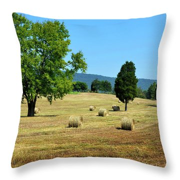 Throw Pillow featuring the photograph Summer Field by Paul Mashburn