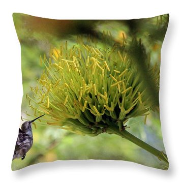 Throw Pillow featuring the photograph Summer Hummer by Jo Sheehan
