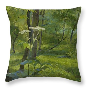 Summer In Fullersburg Woods Throw Pillow