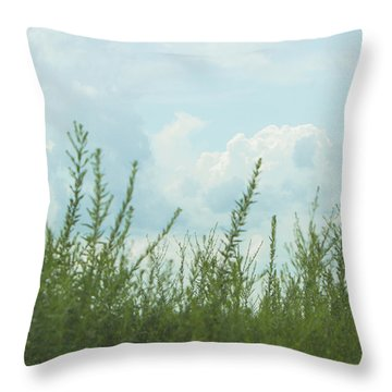 Summer In Watercolor Throw Pillow by Ellie Teramoto