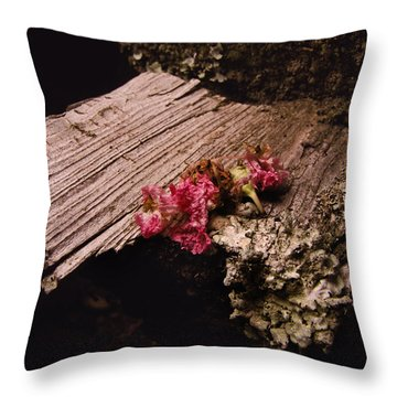 Summer Kisses Throw Pillow by Jessica Brawley