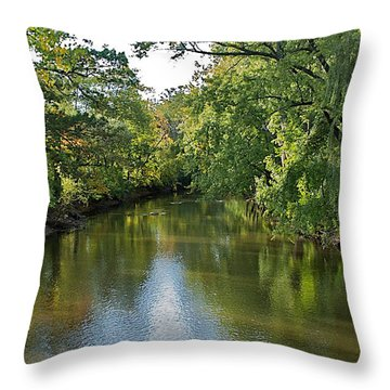 Throw Pillow featuring the photograph Summer Light by Joseph Yarbrough