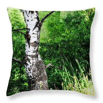 Summer Memory Throw Pillow by Jenny Rainbow