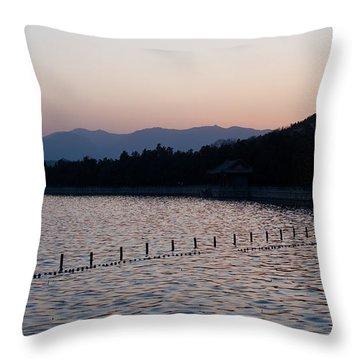 Summer Palace Serenity Throw Pillow