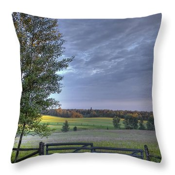 Summer Pasture Throw Pillow by Heather  Rivet