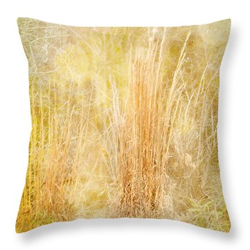 Summer's End Throw Pillow by Judi Bagwell