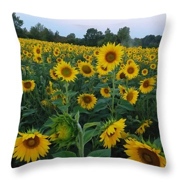 Summers Glory Throw Pillow