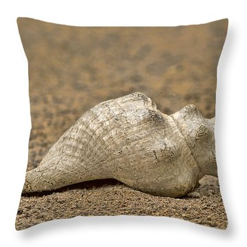 Throw Pillow featuring the photograph Summertime by Anne Rodkin