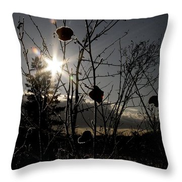 sun Throw Pillow by Johnathan Evans